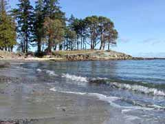 Looking Down                                                 Morning Beach from the                                                 Sands of Morning Beach                                                 Bed and Breakfast,                                                 Galiano Island, BC                                                 Canada